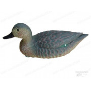 Чучело чирок плавающий, утка Birdland