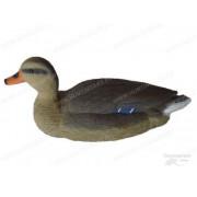 Чучело кряква плавающая большая, утка Birdland