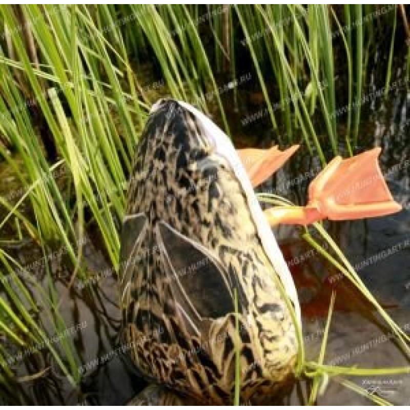 Надувное чучело утки Ныряющая Cherokee Sport