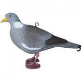 Чучела голубей, вяхирей