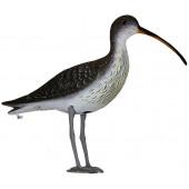 Чучела других птиц