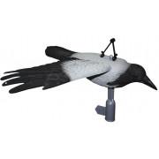 Чучело летящей вороны Sport Plast FLCR31-10