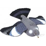 Чучело голубя (вяхирь) летящий