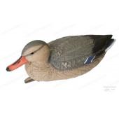 Чучела Birdland