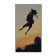 Летающий диск для собак Flashflight Dog Discuit