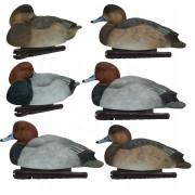 Комплект полноразмерных чучел красноголового нырка, Avian-X TOPFLIGHT Readheads