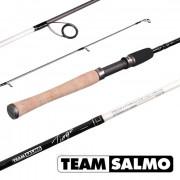 Спиннинг Team Salmo TIOGA 23 6.50